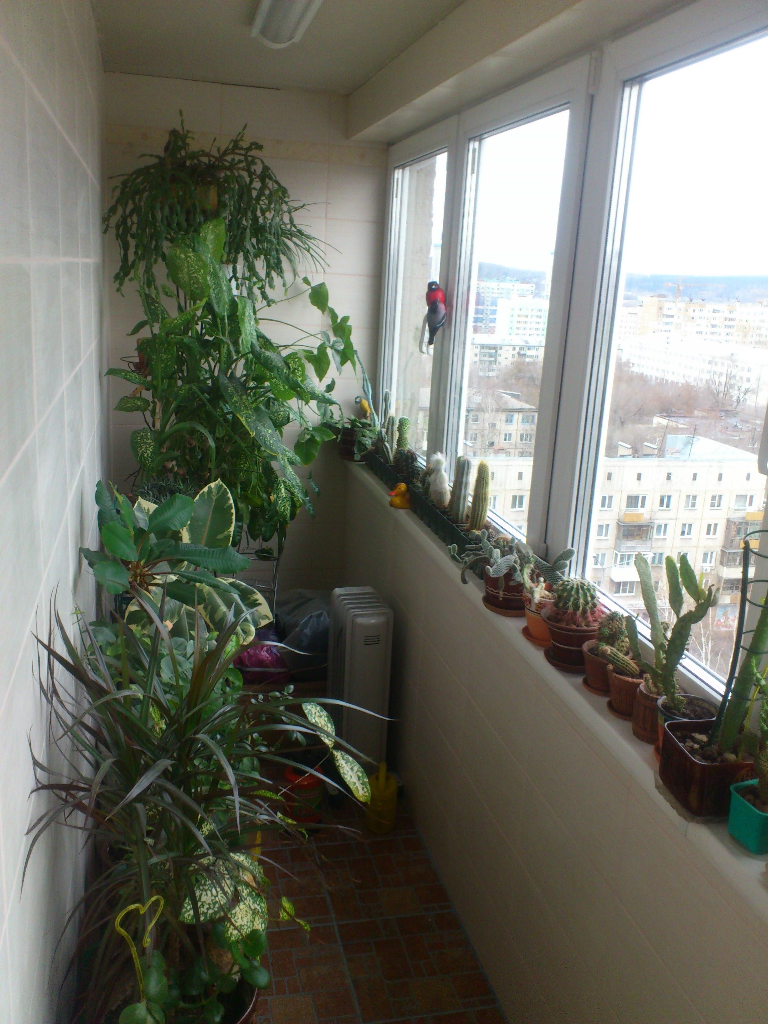 Остекление, утепление балконов и лоджий call-board.